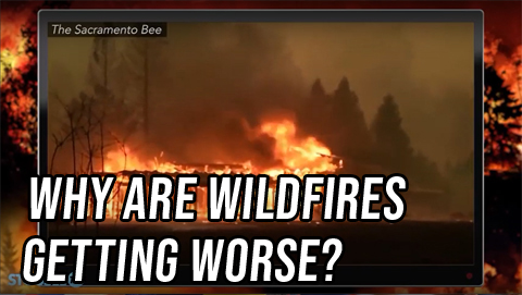 Both Sides: Why Are Wildfires Getting Worse?